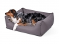 Preview: Padsforall Hundebett Modell Wordcollection Select+ taupe