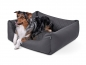 Preview: Padsforall Hundebett Modell Wordcollection Select+ grau