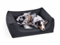 Preview: Padsforall Hundebett Modell Wordcollection Select+ schwarz