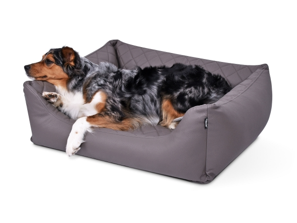 Padsforall Hundebett Modell Wordcollection Select+ taupe