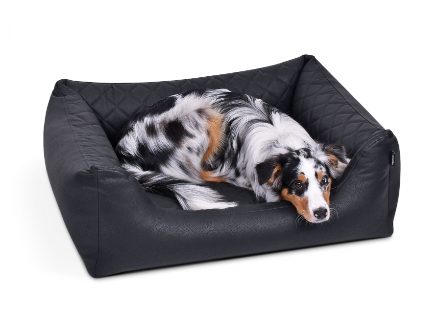 Padsforall Hundebett Modell Wordcollection Select+ schwarz